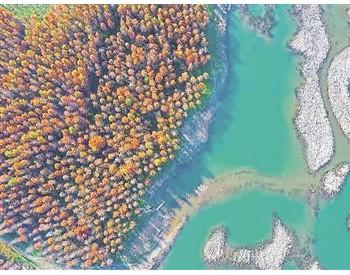 河湖生态缓冲带怎么建?如何管?