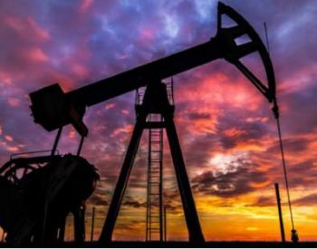 新冠疫情迫使<em>石油输出国组织</em>多次发出减产倡议