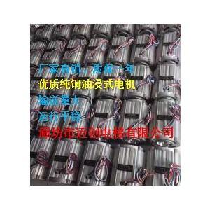 厂家供应家用电梯1.5KW油浸式电机