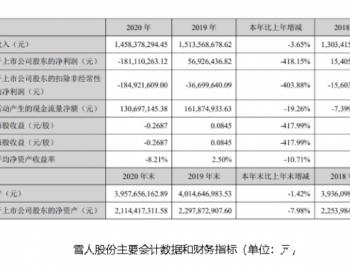 雪人股份去年营收14.58亿 拟定增募资不超6.7亿加码<em>氢能业务</em>布局