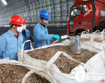 上海石化首尝生物质燃料掺烧