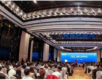 """十四五""""氢能产业发展论坛开幕  氢能将带动形成10万亿级产业"""