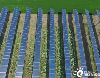 协鑫新能源与国家电投再续电站交易 战略合作持续深入