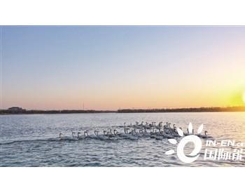 改善流域生态环境 守护一泓清水北上