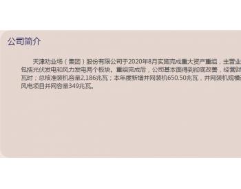 天津劝业场(集团)股份有限公司2020可视化年度报告