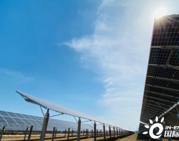 特变电工投建河北衡水农光互补光伏发电项目并网运行