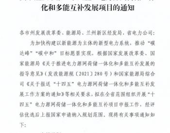 """甘肃启动申报""""十四五""""电力源网荷储一体化和多能互补发展项目工作!"""