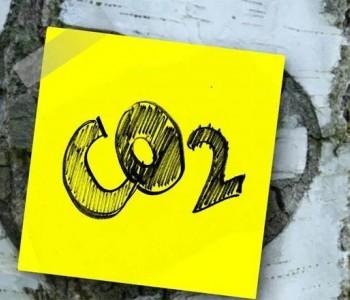 碳中和目标下需重塑绿色金融