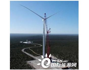 中企承建的阿根廷风电项目正式投入商业运营