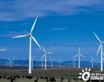 占地5.7万平方米,黑龙江哈尔滨拟在这里新建风电项目