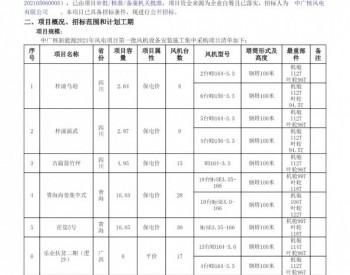 招标丨中国广核新能源2021年风电项目第一批吊装施工工程集中采购(标段02)