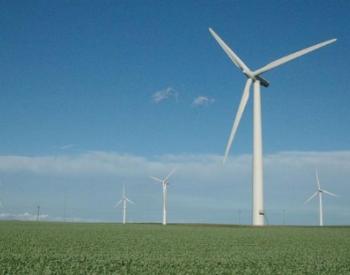 """IEA:太阳能和风能在2020年出现的巨大增长成为""""新常态"""""""