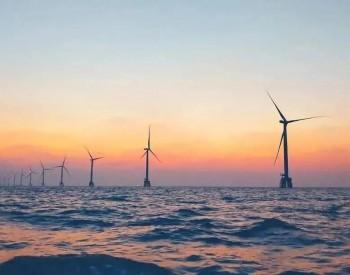 风机安装船遭渔船包围抗议,原来全世界都一个样!