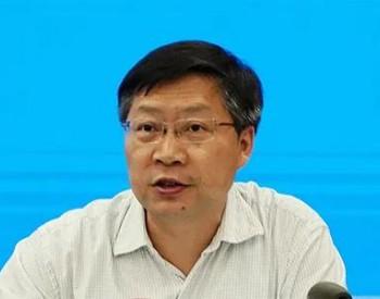 重庆大学副校长廖瑞金:将海南打造成构建新型