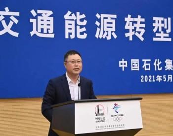 """陈雪松:""""三段式""""发展模式为中国实现碳中和赋能"""