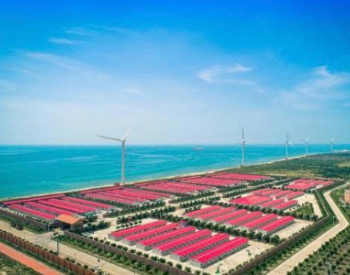 广东汕尾:四大优势助力海上风电产业提速发展