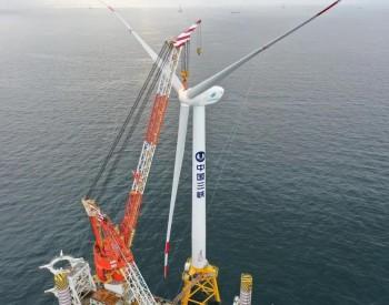 机遇与挑战:风电装机2030年将达到8亿千瓦,2060年达到30亿千瓦