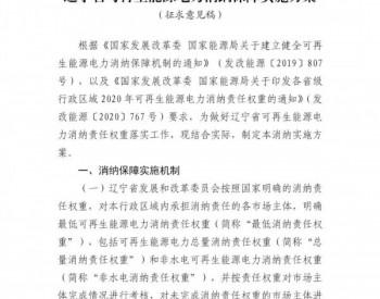非水电消纳责任权重为12.5%!《辽宁省可再生能源电力消纳保障实施方案》(征求意见稿)印发!