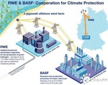 巴斯夫携手莱茵集团开发德国2GW海上风电制氢项目!