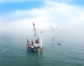 巴斯夫携手莱茵集团开发德国2GW海上风电项目!