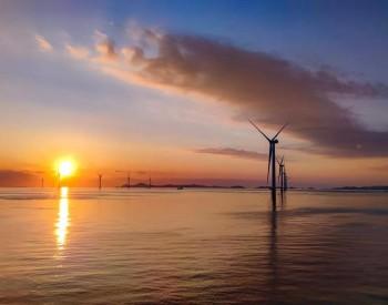 新研发5MW以上机型近20款-陆上风机开发速度过快:产业链是否配套跟得上?