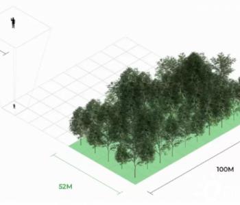 全球商品需求加速森林砍伐,对实现全球碳中和可能