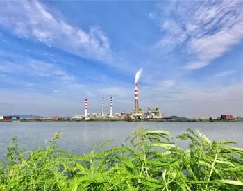 首例!国家能源集团北仑电厂能效水平国内领先,7台机组全上榜!