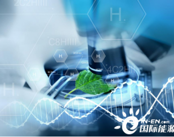 我们为什么选择绿氢?