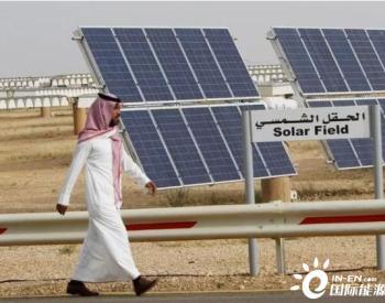 IEA公布七大脱碳行动,2050年太阳能和风能约占据能源系统的70%