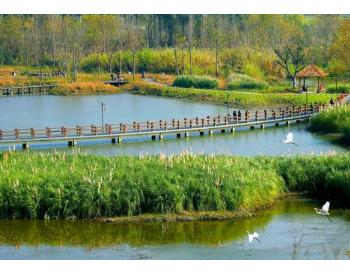 生态环境部:首次将生物多样性指标纳入生态质量综合评价指标框架