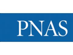 湖南大学PNAS:超超超超级电