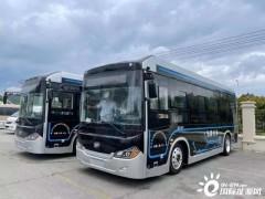加氢3分钟 续航350公里 浙江舟山首批氢燃料公交车上路