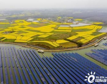 国家能源局官方回应2021年新政
