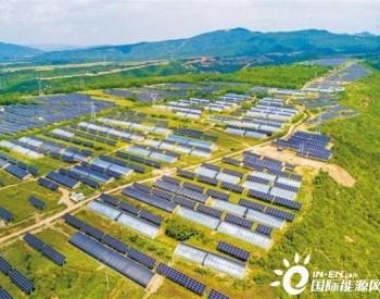 陕西铜川:农光一体增效益