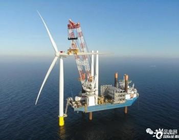 丹麦最大海上风场完成风机安装