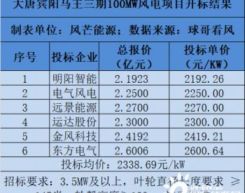 中标丨再刷新低!2192元/kW!大唐广西宾阳马王三期100MW风电项目开标