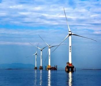 中广核累计80MW风电机组采购项目多次重新招标,此前金风、海装、明阳等预中标!