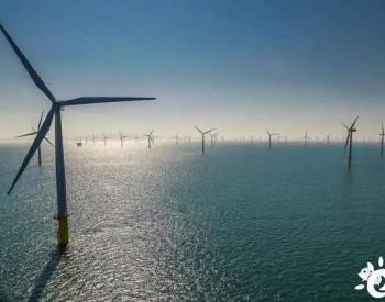 发电量降低?<em>海上风电场</em>靠太近有风险