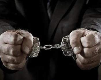国家电网有限公司企业管理协会秘书长许子智接受审