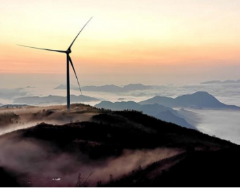<em>中国碳中和</em>蓝图推动海上风电走向深蓝