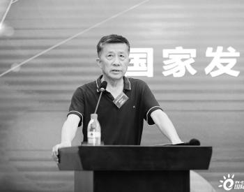 """农村经济司原司长高俊才:加强""""四个统筹""""发展光伏产业"""