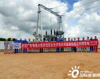 追光逐电 广东能源集团开发公司两光伏项目相继并