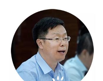 国华投资王承凯:源荷互动是新型电力系统的新