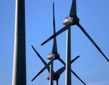 风力发电是否是绿色能源?法国朝野爆发争议