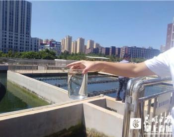 2021年前5月滇池流域28座水质净化厂净化污水2.7亿立方米