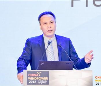 秦海岩:中国风电是注定的减碳主力军