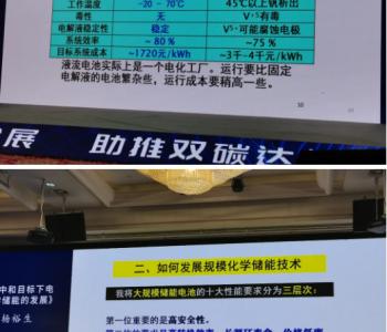 杨裕生院士:碳中和目标下电化学储能的发展