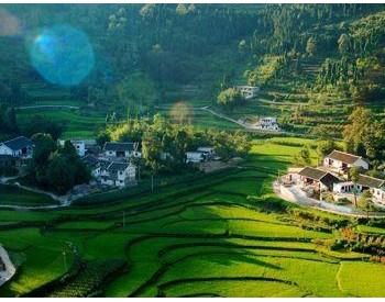 以系统观念推动长江三峡地区生态保护修复