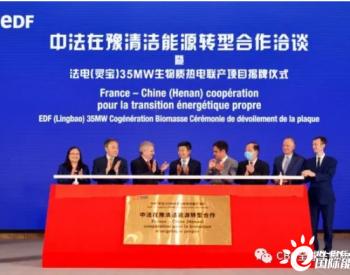 法电<em>生物质热电联产项目</em>揭牌仪式在河南郑州举行