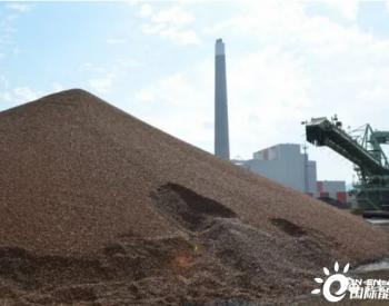 2021年全球木质颗粒市场展望